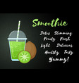 green natural smoothie kiwi fruit shake banner vector image vector image