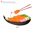 Japanese Salmon Sashimi A Popular Dish in Japan vector image vector image