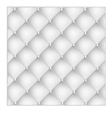 beautiful white texture vector image