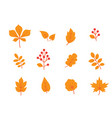 autumn leaves set fall leaf and berries icons vector image vector image