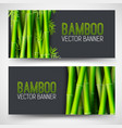 bamboo banners concept intage art traditional vector image