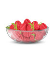 glass bowl with heap of ripe raspberry vector image