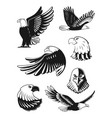 monochrome set eagles vector image