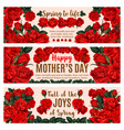 mother day greeting banner with spring rose flower vector image vector image