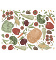 natural vegetables pumpkin cabbage tomatoes vector image