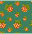 seamless pattern hand drawn cloudberry vector image vector image