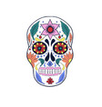 skull with flower print design with slogan vector image