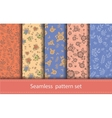 set seamless floral patterns decorative vector image