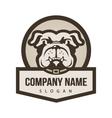 bulldog logo vector image vector image