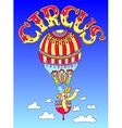 drawing of cirque theme - clown in a balloon with vector image vector image