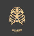 human ribs icon vector image vector image