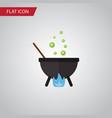 isolated cauldron flat icon magic element vector image vector image