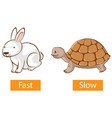 opposite adjectives words with fast and slow vector image