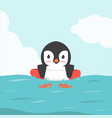 penguin swimming inflatable ring cartoon vector image
