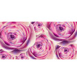 spring summer flowers banner watercolor vector image vector image