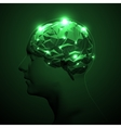 Triangular Polygons Human Brain vector image