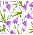 purple crocuses in the snow pattern vector image