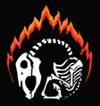 horse skeleton flaming emblem vector image