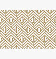 modern luxury stylish geometric textures vector image vector image
