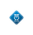 owl open eyes for logo design wise bird in a vector image vector image