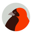red bishop bird face head vector image