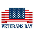 usa veterans day logo flat style vector image