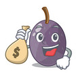 with money bag velvet tamarind fruit on plate vector image