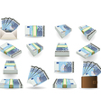 full set of twenty euros banknotes vector image vector image