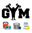 gym fitness concept protein weight workout vector image