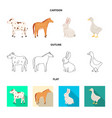 isolated object of breeding and kitchen logo vector image vector image
