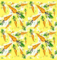 seamless pattern carrot vegetables ornament vector image vector image