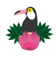 toucan exotic flower tropical summer vector image vector image