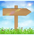 wood board sign with grass and sky background vector image vector image