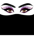 arabic female eyes vector image