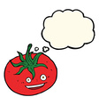 cartoon tomato with thought bubble vector image vector image