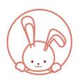 cute bunny icon vector image vector image