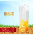 orange fruit and juice splash vector image vector image
