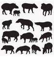 tapir silhouettes vector image