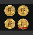 vip member golden badge collection 3 vector image