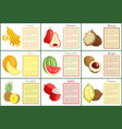 citron and chompoo pineapple fruit posters vector image vector image