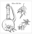 Ink hand drawn olive oil set vector image vector image