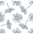 seamless pattern with hand drawn pastel chamomile vector image vector image