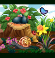 background scene with insects in garden vector image vector image