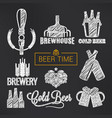 beer sketch set beer glass and bottle vector image