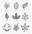 set leafs design vector image