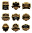 set of vintage gold labels vector image vector image