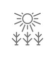 sun shines on field line icon vector image
