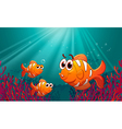 Three fishes under the sea with corals vector image vector image