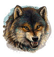 angry wolf sketchy color portrait a wolf vector image vector image
