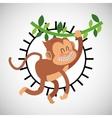 Animal design monkey icon Isolated vector image vector image